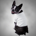 Honden Shirtjes - Learn More
